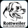 rtw_logo