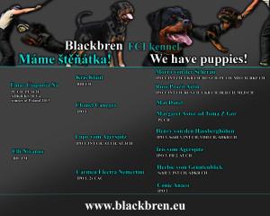 blackbren